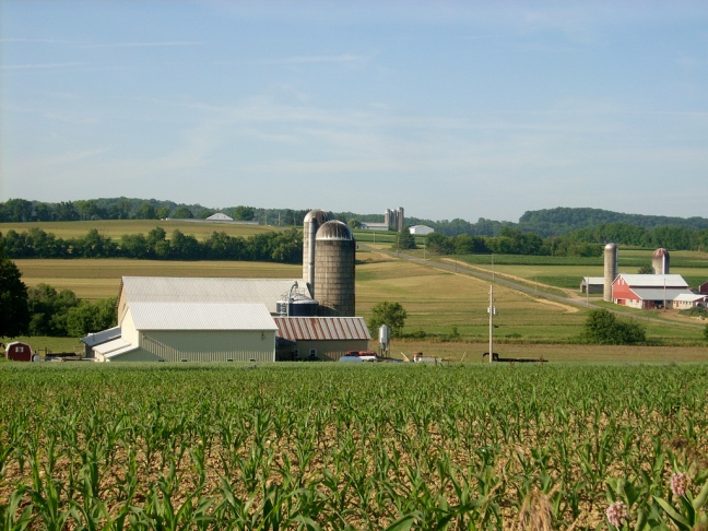 This photo shows dairy farms in Buffalo Township, Pennsylvania