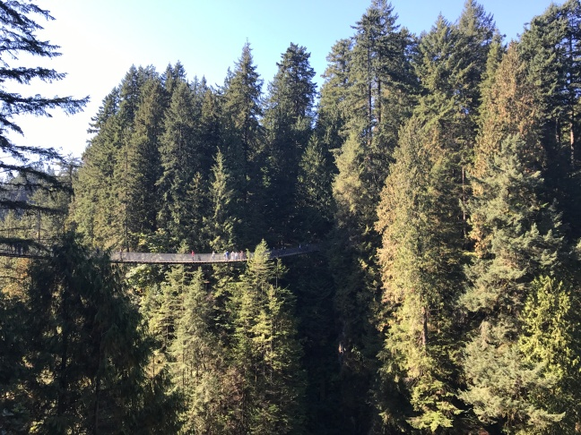 capilano_suspension_bridge_vancouver