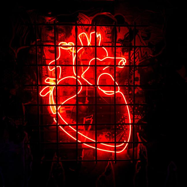 A neon-red anatomical heart wall hanging sits behind a steel grid